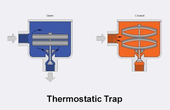 Diagram of thermostatic trap